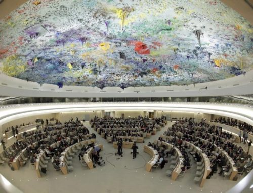 59th Session of the UN Convention Against Torture