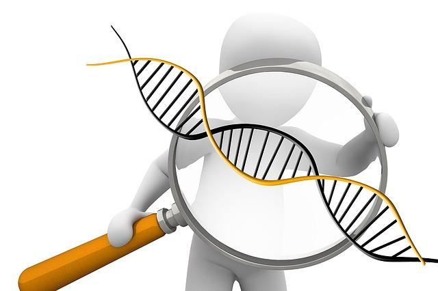 deoxyribonucleic-acid-1500068_640